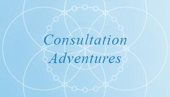 Consultation Adventures