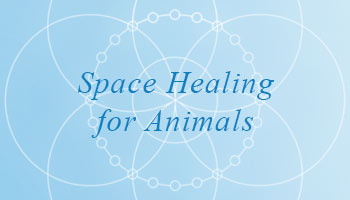 Space Healing for Animals